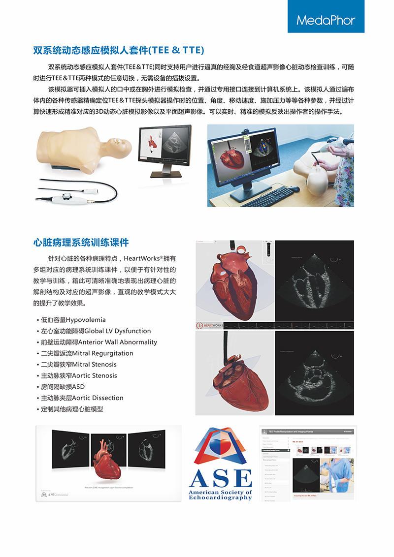 HEARTWORKS-TEE、TTE心动超声检查模拟器05.jpg