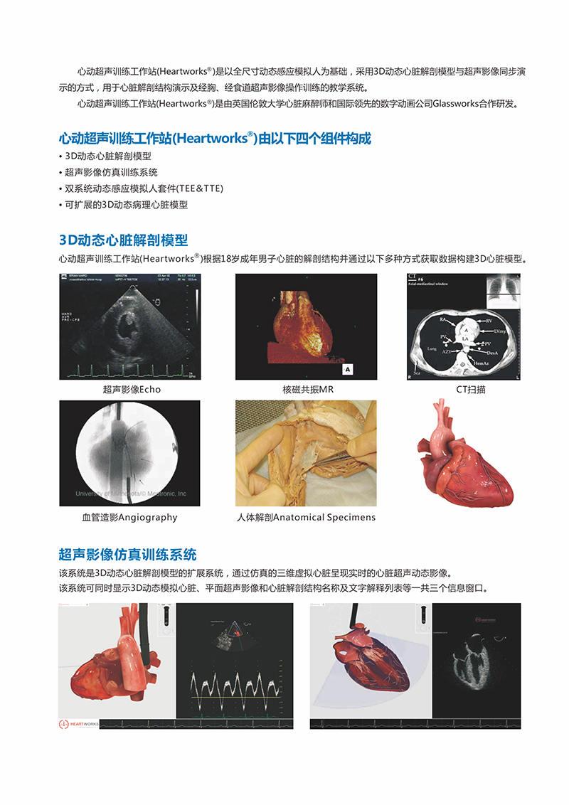 HEARTWORKS-TEE、TTE心动超声检查模拟器02.jpg