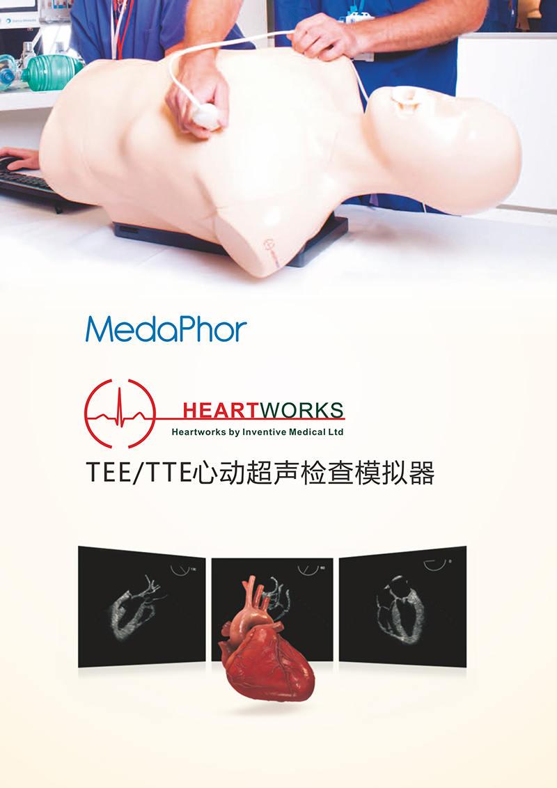 HEARTWORKS-TEE、TTE心动超声检查模拟器01.jpg